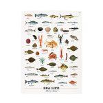 Utěrka – mořský svět